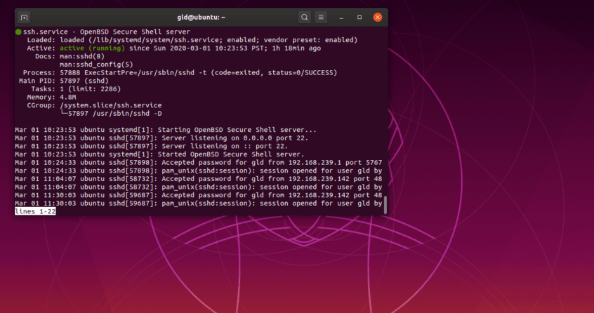 install ssh and basic network utilities in ubuntu