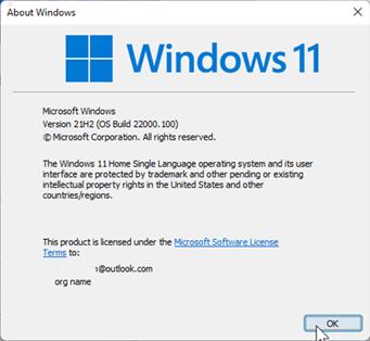 windows 11 version is displayed.